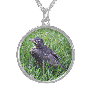 Baby Robin Just Out of Nest Round Pendant Necklace