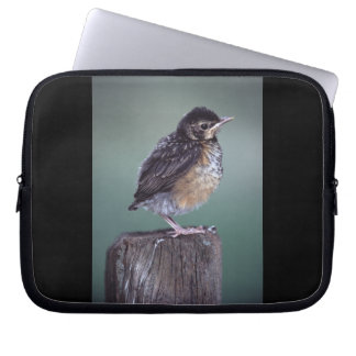 baby robin laptop computer sleeves