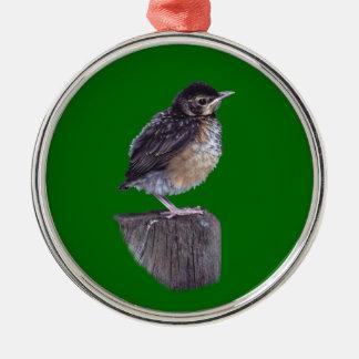 baby robin metal ornament