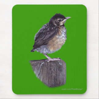 Baby Robin Mouse Pad