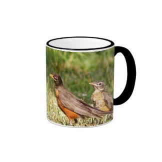 Baby Robin Mugs