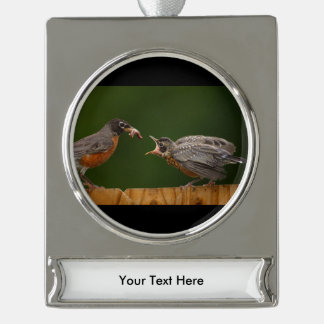 Baby Robin Silver Plated Banner Ornament