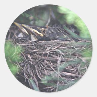Baby robins classic round sticker