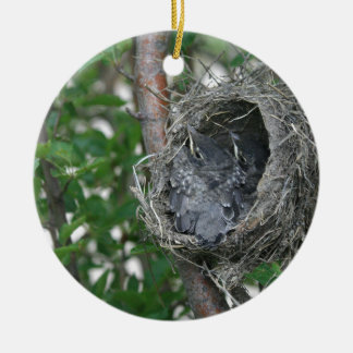 Baby Robins in the Nest Ceramic Ornament