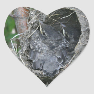 Baby Robins in the Nest Heart Sticker