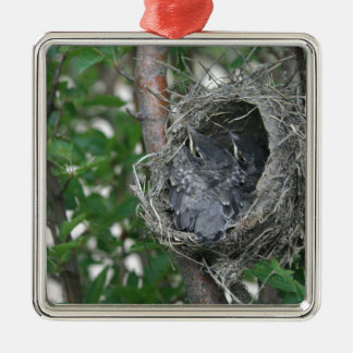 Baby Robins in the Nest Metal Ornament