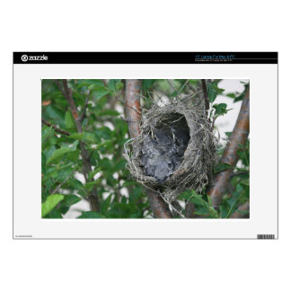 """Baby Robins in the Nest Skins For 15"""" Laptops"""