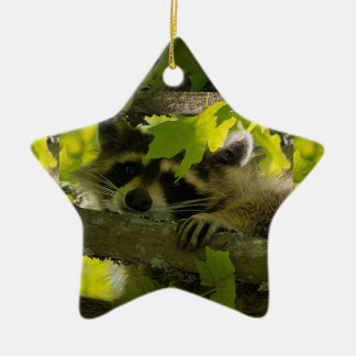 Baby Roccoon Ceramic Ornament
