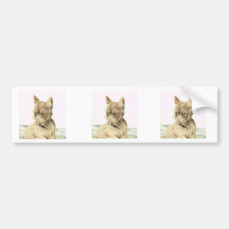 Baby Scotch Terrier - SUPER CUTE ! Bumper Sticker