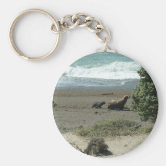 Baby sea lion and mother basic round button keychain