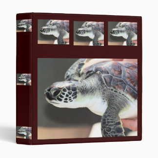Baby Sea Turtle Binder