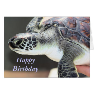 Baby Sea Turtle Birthday Card