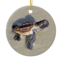 Baby Sea Turtle, Just Hatched Ceramic Ornament