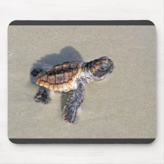 Baby Sea Turtle, Just Hatched Mouse Pad