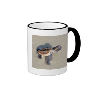 Baby Sea Turtle, Just Hatched Ringer Coffee Mug