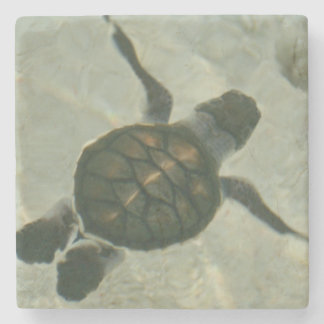 Baby Sea Turtle Swimming Out To Sea Stone Coaster