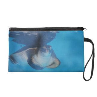 Baby Sea Turtle Wristlet
