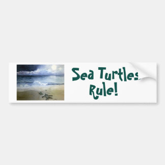 Baby Sea Turtles Hatching at Night Bumper Sticker
