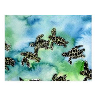baby sea turtles reptile animal wildlife painting postcard