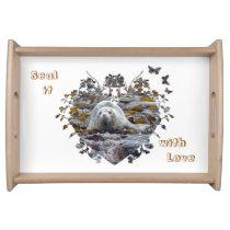 Baby seal animal wildlife tray