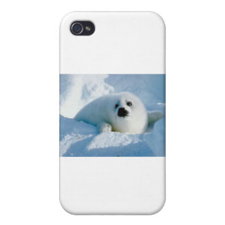 baby seal iPhone 4 covers