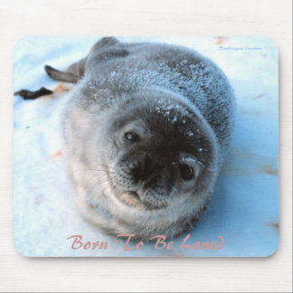 Baby Seal Mousepad