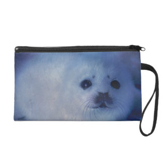 Baby Seal on Ice Wristlet Clutches