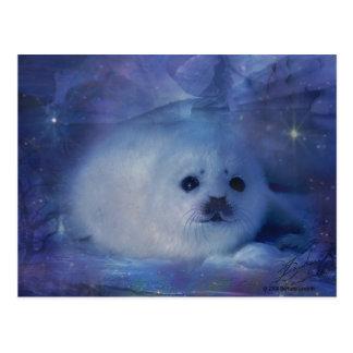 Baby Seal on Ice - Beautiful Seascape Postcard