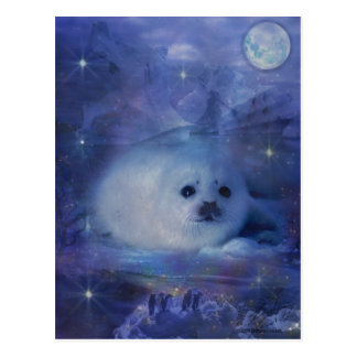 Baby Seal on Ice - Beautiful Seascape Postcard