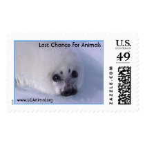 Baby Seal Postage