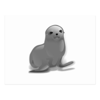Baby Seal Postcard