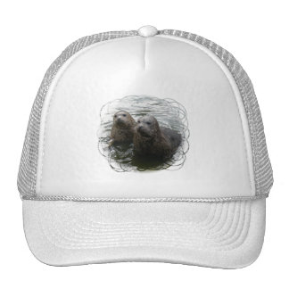 Baby Seals Baseball Hat
