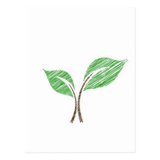 Baby seedling sketched postcard