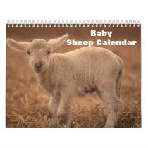 Baby Sheep Lamb 2022 Calendar