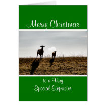 Baby sheep lamb Christmas Card