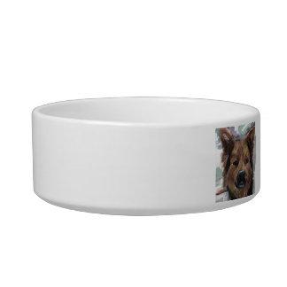 baby shepherd dog bowl
