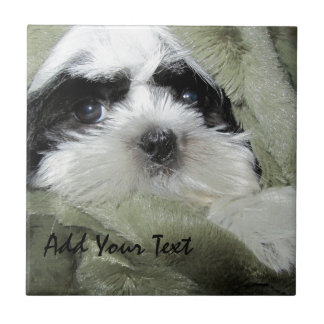 Baby Shih Tzu Puppy Peeking Out from Blanket Ceramic Tile