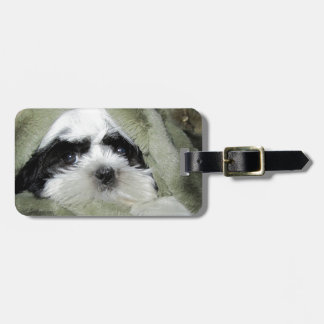Baby Shih Tzu Puppy Peeking Out from Blanket Luggage Tag