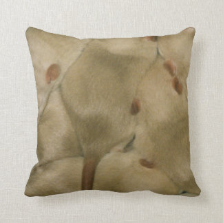 baby siamese rats pillow