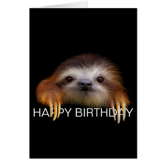 Baby Sloth Birthday Card
