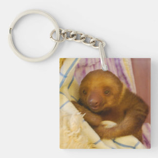 Baby Sloth in Costa Rica Keychain