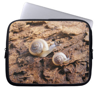Baby Snails Laptop Computer Sleeves
