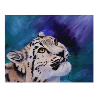 Baby Snow Leopard Postcard
