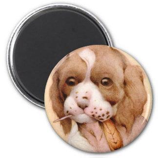 Baby Spaniel - SUPER CUTE ! 2 Inch Round Magnet