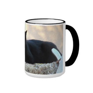 baby squeaks and momma squeaks ringer mug