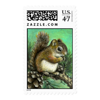 Baby squirrel and cones postage