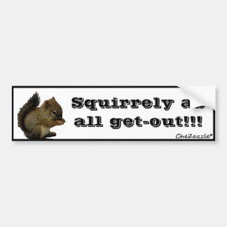 Baby Squirrel Car Bumper Sticker