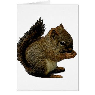 Baby Squirrel Card