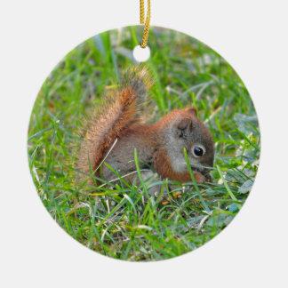 Baby Squirrel Ceramic Ornament