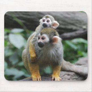 Baby Squirrel Monkey  Mouse Pad